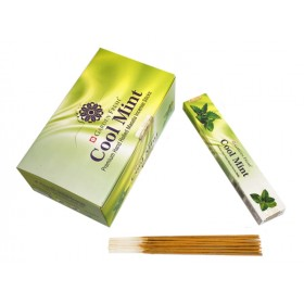 Garden Fresh Cool Mint 15 грамм